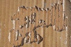 Dommages de termite sur la boîte de papier ondulée Photo libre de droits
