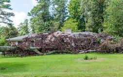 dommages de tornade Photographie stock
