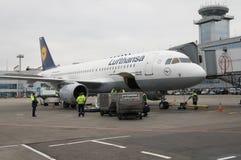 Domodedovo-Flughafen, Moskau - 11. November 2010: Gepäck, das zu Airbus A320-200 von Lufthansa lädt Stockfotografie
