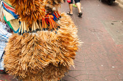 Domokrążcy bubla kurczaka piórka duster Fotografia Royalty Free