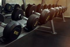 Domoor in de traininggewichten van de geschiktheidsgymnastiek het traning wordt geplaatst die Stock Foto