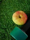 Domoor en een appel op gras Concept sporten en gezonde levensstijl Stock Fotografie