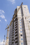 Domowa budowa, żuraw Fotografia Stock