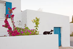 domowa Grek wyspa Obraz Stock