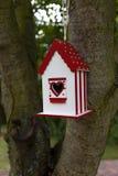 domowa ptak czerwień Zdjęcia Stock
