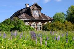 domowa stara rosyjska wioska Zdjęcia Stock