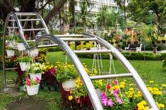 Domowa wystawa kwiaty i rośliny Fotografia Royalty Free