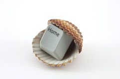 Domowego klucza inside denna skorupa Obraz Stock