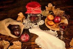 Domowej roboty śliwkowy brandy Obraz Royalty Free