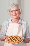 domowej roboty apricoat tarta Zdjęcia Royalty Free