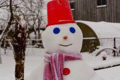 Domowej roboty bałwanów stojaki w zima krajobrazie ono uśmiecha się przy kamerą Zdjęcie Royalty Free