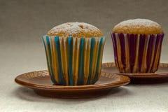 Domowej roboty babeczka z sproszkowanym cukierem na brown ceramicznym spodeczku Zdjęcie Royalty Free
