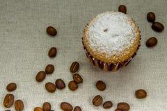 Domowej roboty babeczki z sproszkowanym cukierem, kawowe fasole Zdjęcia Stock