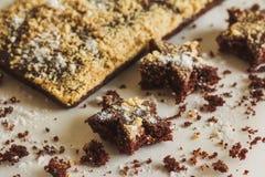 Domowej roboty biskwitowi ciastka Obraz Stock