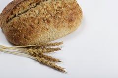 Domowej roboty chleb i banatka Zdjęcie Stock