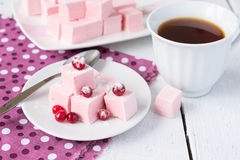 Domowej roboty cranberries marshmallow Zdjęcie Royalty Free