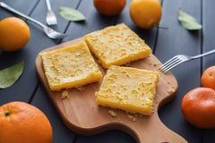 Domowej roboty cytryna obciosuje z świeżymi cytrynami i tangerines na ciemnym tle obraz royalty free