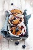 Czarnych jagod muffins Obrazy Royalty Free