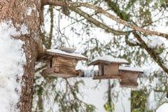 Domowej roboty drewniany ptaka dozownik na drzewie w zimie, pod ?niegiem fotografia royalty free