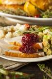 Domowej roboty dziękczynienie Turcja na talerzu Fotografia Stock