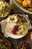 Domowej roboty dziękczynienie Turcja na talerzu Zdjęcie Stock