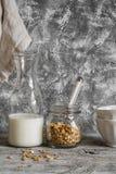 Domowej roboty granola, dojna butelka i ceramiczny puchar na lekkim tle, Fotografia Stock