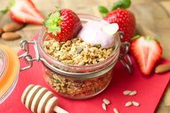 Domowej roboty granola i owoc Obraz Royalty Free