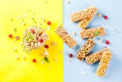 Domowej roboty granola z jagodami i mennicą Fotografia Stock