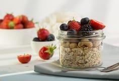 Domowej roboty granola z mlekiem, świeże jagody dla śniadania, fotografia royalty free