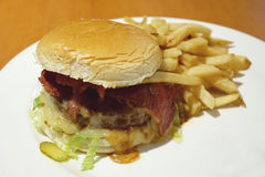 Domowej roboty hamburger z francuskimi dłoniakami obraz royalty free