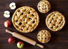 Domowej roboty Jabłczanego kulebiaka ciasto z rodzynkami i cynamonowymi piekarnia produktami na drewnianej tło teksturze Odgórny  Fotografia Stock