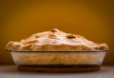 Domowej roboty jabłczany kulebiak zdjęcia royalty free