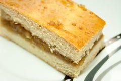 Domowej roboty jabłczany kulebiak Zdjęcie Stock