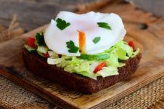 Domowej roboty jajko kłusująca kanapka Jajko kłusował na żyto chleba plasterku z świeżymi warzywami i pietruszką zdrowe śniadanie Fotografia Royalty Free