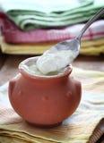 Domowej roboty jogurt Obrazy Stock