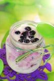 Domowej roboty jogurt z czarną jagodą dla dziecka Fotografia Royalty Free