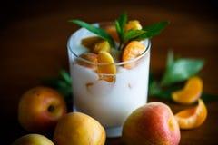 Domowej roboty jogurt z dojrzałymi morelami na drewnianym stole Obraz Stock