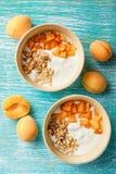 Domowej roboty jogurt z granola, morelą i sosnowymi dokrętkami, zdjęcie royalty free