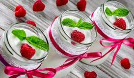 Domowej roboty jogurt z malinkami i mennicą w szkle zgrzyta na Fotografia Stock