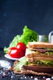 Domowej roboty kanapka z sałatką fotografia royalty free