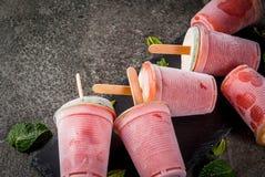 Domowej roboty koktajli/lów popsicles Fotografia Stock