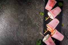 Domowej roboty koktajli/lów popsicles Zdjęcia Royalty Free