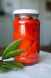 Domowej roboty konserwować świezi czerwoni pieprze Zdjęcia Royalty Free