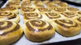 Domowej roboty kopii barwioni ciastka Obraz Stock