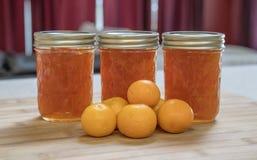 Domowej roboty Kumquat Marmoladowy Obrazy Royalty Free