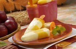 Domowej roboty lody jogurt i świeża owoc Fotografia Stock