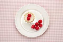 Domowej roboty mały tort z kremowym serem i świeżym ogrodowym raspberri Fotografia Stock