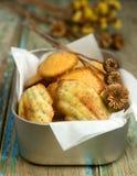 Domowej roboty Madeleine ciastka z makowymi ziarnami i cytryna zapałem Zdjęcie Stock