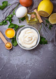 Domowej roboty majonezowy kumberland i oliwa z oliwek, jajka, musztarda, cytryna Obraz Stock