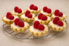 Domowej roboty mali torty z świeżymi malinkami na bieliźnianej pielusze Zdjęcia Stock